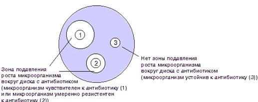 Определение чувствительности микроорганизмов к антибиотикам реферат 741