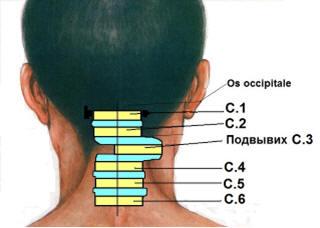 Что обозначает боль в спине