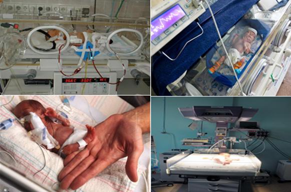 Организация медицинской помощи женщинам в период беременности и родов