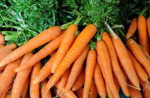 Полезные для здоровья свойства моркови