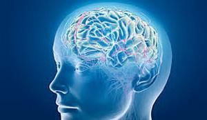 Исследователи из США пришли к заключению о том, что добавиться снижения давления до нормальных значений при инсульте не нужно