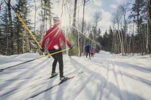 Виды физической активности зимой: что полезнее?