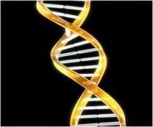 Правительство Китая остановило все исследования в области редактирования генома человека