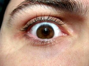 В Китае врачи вырастили хрусталик глаза с помощью стволовых клеток