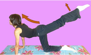 Рис. 12. Торможение локомоторной синергии попеременным подниманием ног из коленно-кистевого положения