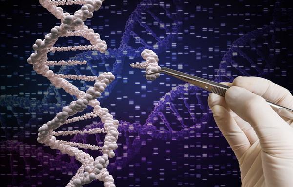 Российские генетики обещают вылечить самые тяжелые недуги