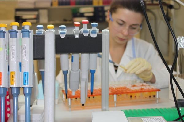 Новый тест крови позволит понять, какова физическая кондиция человека