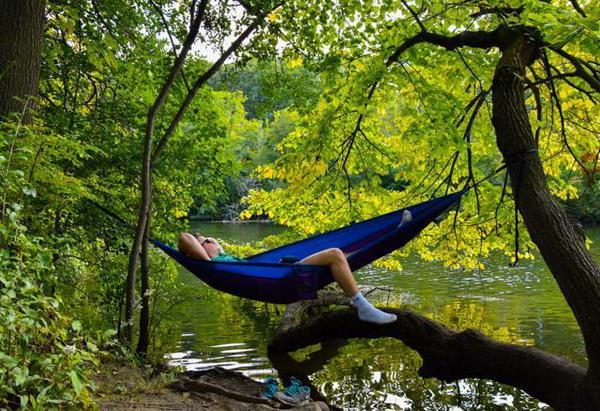 Для нормальной деятельности мозга важно спать днем