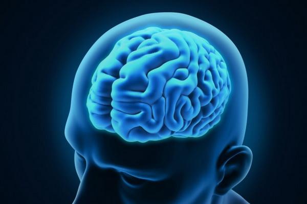 Неврологи исследовали мозг боксеров и бойцов смешанных единоборств