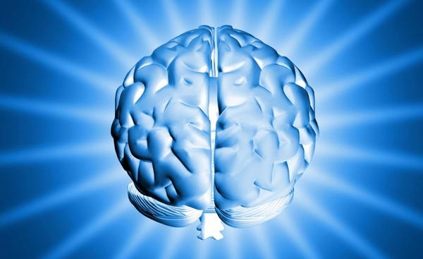 Поведение человека в стрессовой ситуации зависит от одной группы нейронов