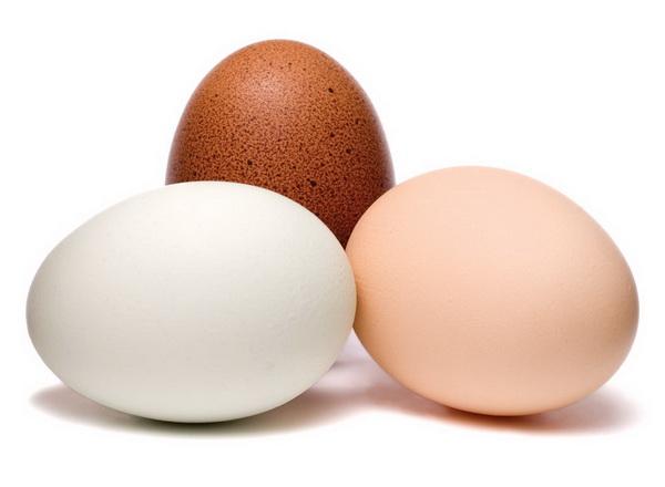 Испанский диетолог назвал идеальный простой продукт для похудения