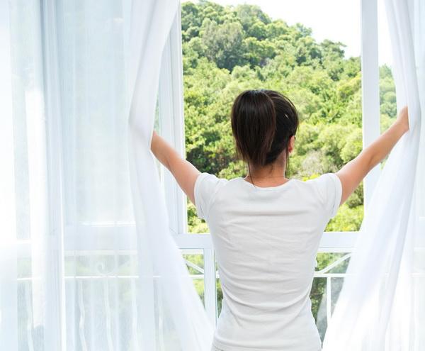 Вид растительности из окна уменьшает тягу к вредным привычкам