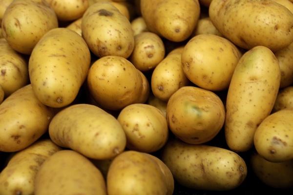 Картофель так же эффективен для восстановления мышц, как и спортивное питание