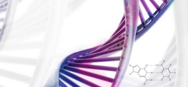 У подростков из неблагополучных районов наблюдаются различия в регуляции генов