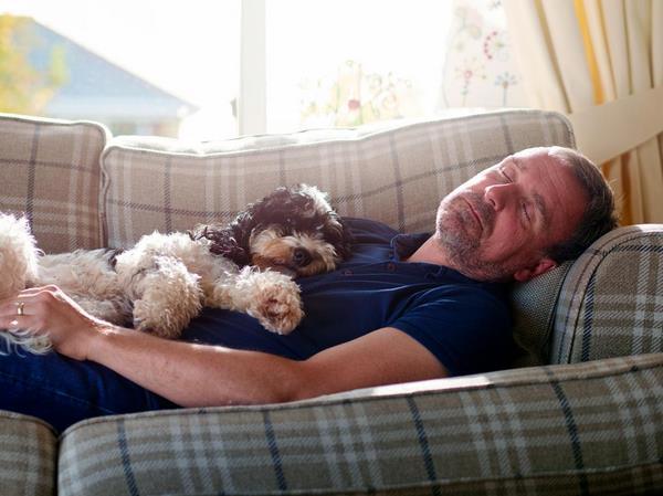 Дневной сон полезен для стареющего головного мозга