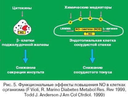 Бетаблокаторы и диабет 2 типа